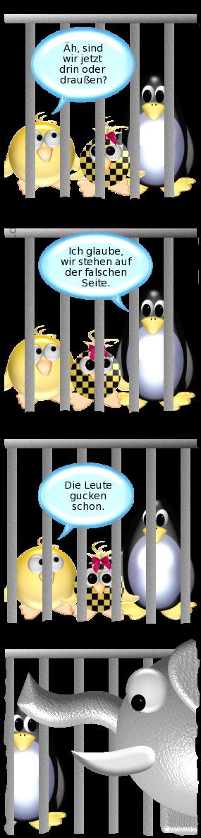 [Ente, Pinguin und Babyente hinter Gitterstäben] -- Ente: Äh, sind wir jetzt drin oder draußen? -- Pinguin: Ich glaube, wir stehen auf der falschen Seite. -- Ente: Die Leute gucken schon. -- [Elefant schaut sich die drei an]